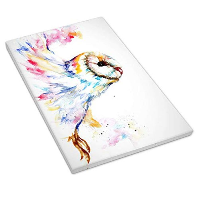 Aurora Owl Painting Print Canvas Wall Art Picture with £10 off Coupon