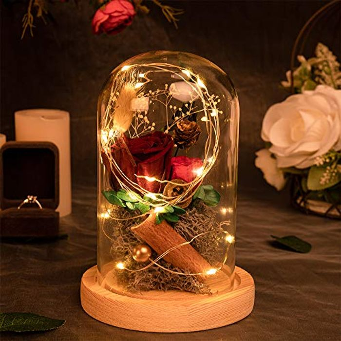 MACTING Enchanted Beauty and the Beast Rose with LED Light - Only £6.65!