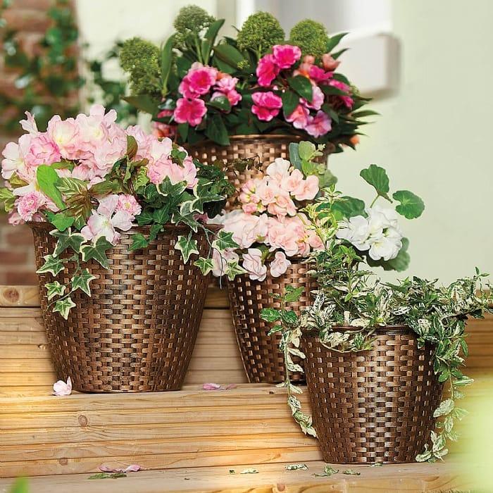 Set Of 4 Rattan-Look Planters - 50% Off