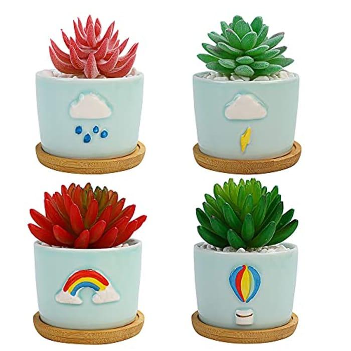 4 Pack Ceramic Succulent Pots with Saucers - 8.5cm