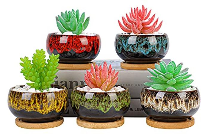 Set of 5 Succulent Plant Pots with Bamboo Saucers - 10cm