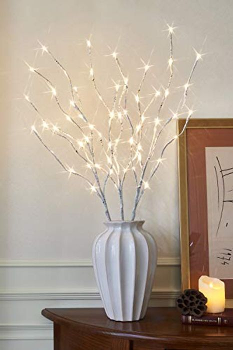 EAMBRITE 3 Pack Waterproof White Birch Twig Lights with 60 LED's