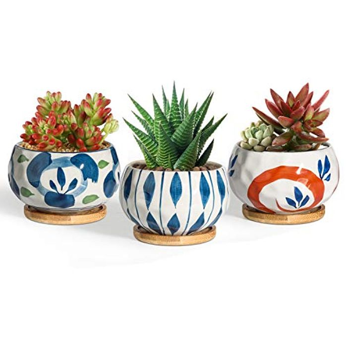 T4U 9.5CM Succulent Pots Japanese Style with £15 off Coupon