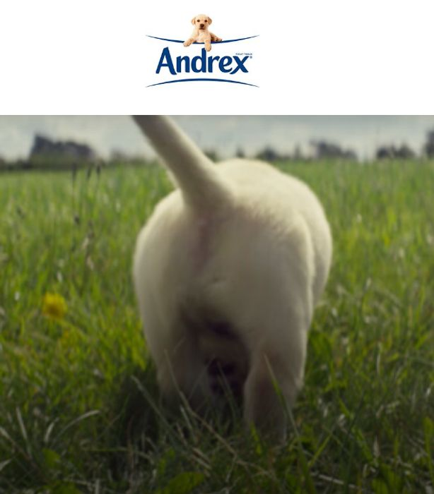 FIND YOUR ANDREX CLEAN & Get A Free 50p Andrex Coupon