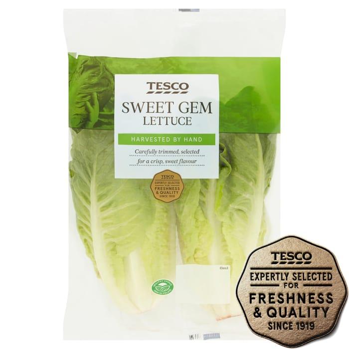 Tesco Sweet Gem Lettuce - clubcard price