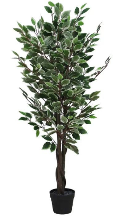 Artificial Ficus Tree - 120cm at Homebase