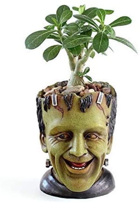 Frankenstein Flower Pot with Drainage Hole - 4.72x5.78x6.3ins