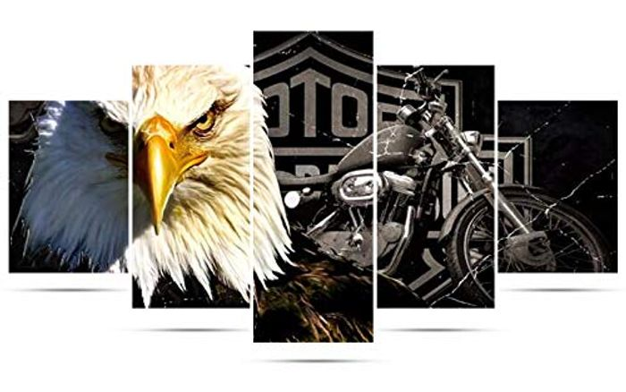 5 Pack 5D Diamond Painting Kits - Eagle and Motorcycle
