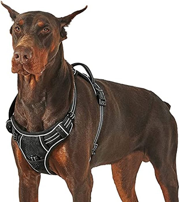 Lesure No Pull Large Dog Harness with £8 off Coupon