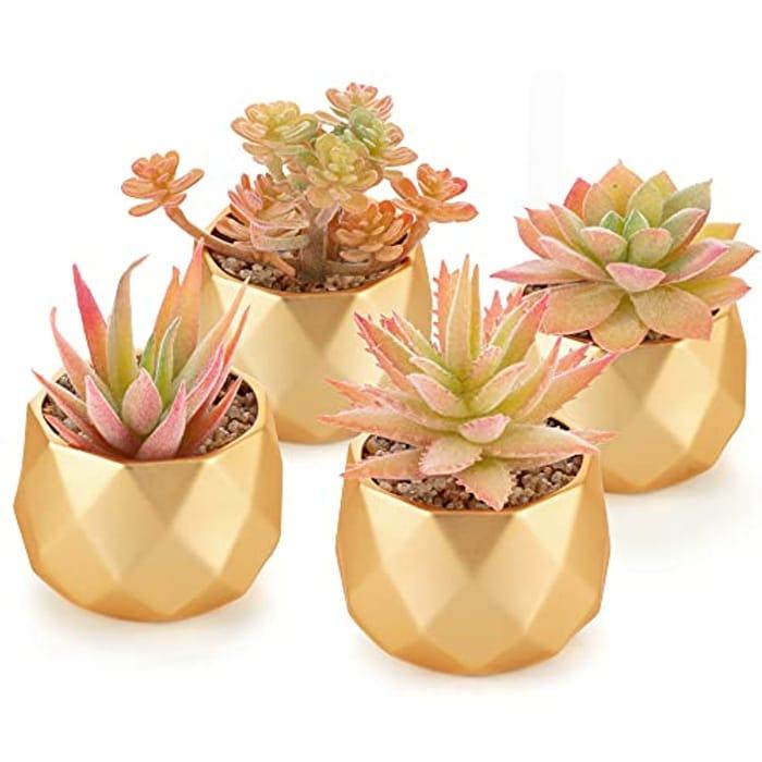 4 Piece Artificial Yellow Succulent Plant Ceramic Pots