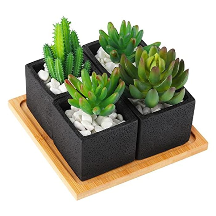 TOTOOSE Indoor Succulent Plant Pots - Only £4.99!