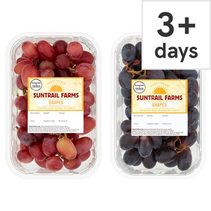 Suntrail Farms Grapes 500G