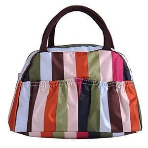 Lunchbag / handbag - I have a couple of these - so handy!