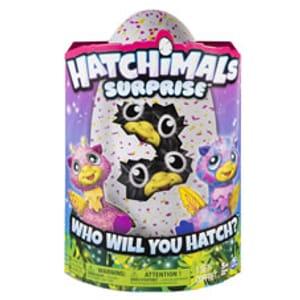 Hatchimals Surprise Egg Free C&C