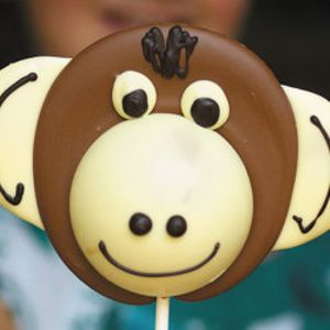FREE Chocolate Lolly & Other Chocolate Samples