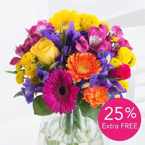 Spring Brights + 25% Extra FREE