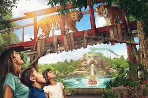 FREE TICKETS Chessington World of Adventures STARTS 12PM