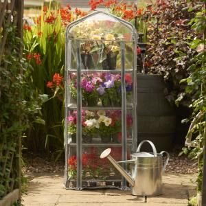 Mini Greenhouse Only £7.50
