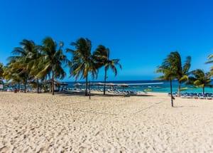 Wonderful Jamaica