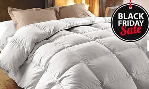 Luxury Hotel Duck or Goose Feather Duvet (13.5 Tog) - ONLY £19.99!