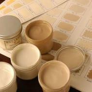 Free sample paint pot