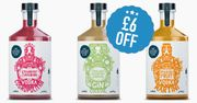 Enjoy £6 off Cocktail Pickers