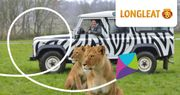 20% off Longleat Safari Park plus £5 Food and Drink Voucher. Great for Half Term