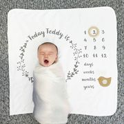 Baby Milestone Prop Blanket Free Delivery