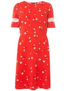 Dorothy Perkins - Curve Red Floral Print Fit and Flare Dress