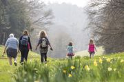 Free Binoculars with Direct Debit Membership Subscriptions at National Trust