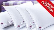 Bargain! Hotel Quality Extra-Filled Duck Feather Pillows