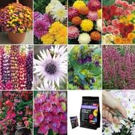 26 Plant Bundle