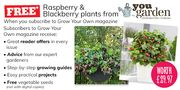 Subscribe to Grow Your Own Mag & Receive Raspberry & BlackBerry Plants Free