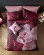 Sale!! Porcelain Rose Cotton Double Duvet Cover