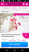 Beauty and the Beast Inspired Rose Gold Make up Brushes