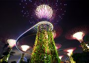 Epic Singapore City & Thailand Jungle Holiday with a Treehouse Retreat Stay