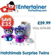 Almost HALF PRICE - Hatchimals Surprise Twins Purple or Teal