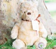 Win a Winnie the Pooh Toy (Worth £24.99)
