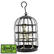 Halloween Haunted House Caged Crow