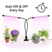 £7 off Led Grow Lights for Indoor Plants
