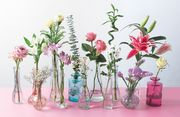 10% off Orders plus Free Delivery at Bunches Flowers