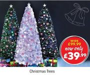 Christmas Tree 'WOW BUYS' at Studio - Now £39.99, SOME ARE EVEN LESS