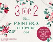 3 for 2on All Paintbox Flowers China