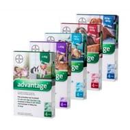 Pet Drugs Online - Advantage Spot on Flea Treatment - save 60%