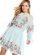 V by Very Petite Embroidered Dress in Mint Size 12