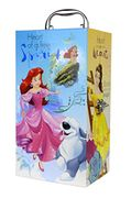 Disney Princess Light up Princess Beauty Wardrobe
