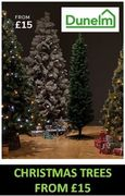 Christmas Trees from £15 at Dunelm