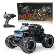 Monster Truck Remote Control Car HALF PRICE