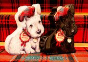 If You Purchase Our Meg and Wee Mac, You Can Get Wee Mac for HALF PRICE.