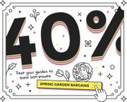40% off Our Entire Spring Bulbs Range